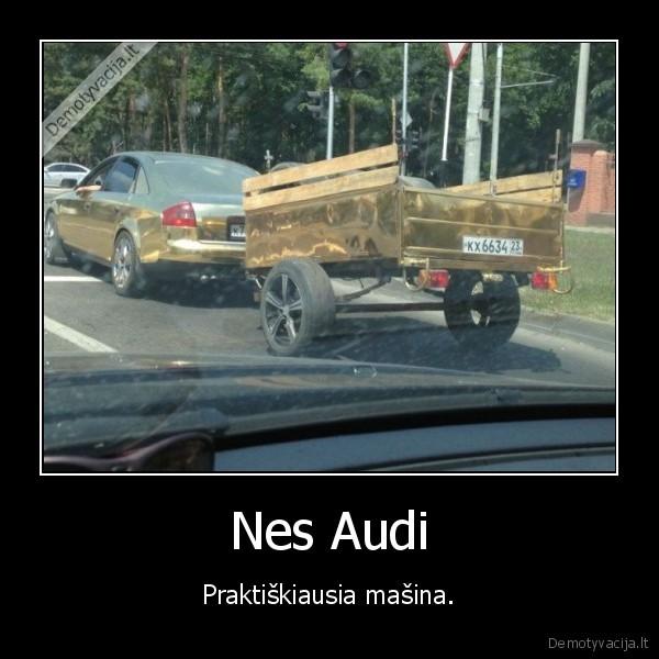 demotyvacija.lt_Nes-Audi-Praktiskiausia-masina_138691602245